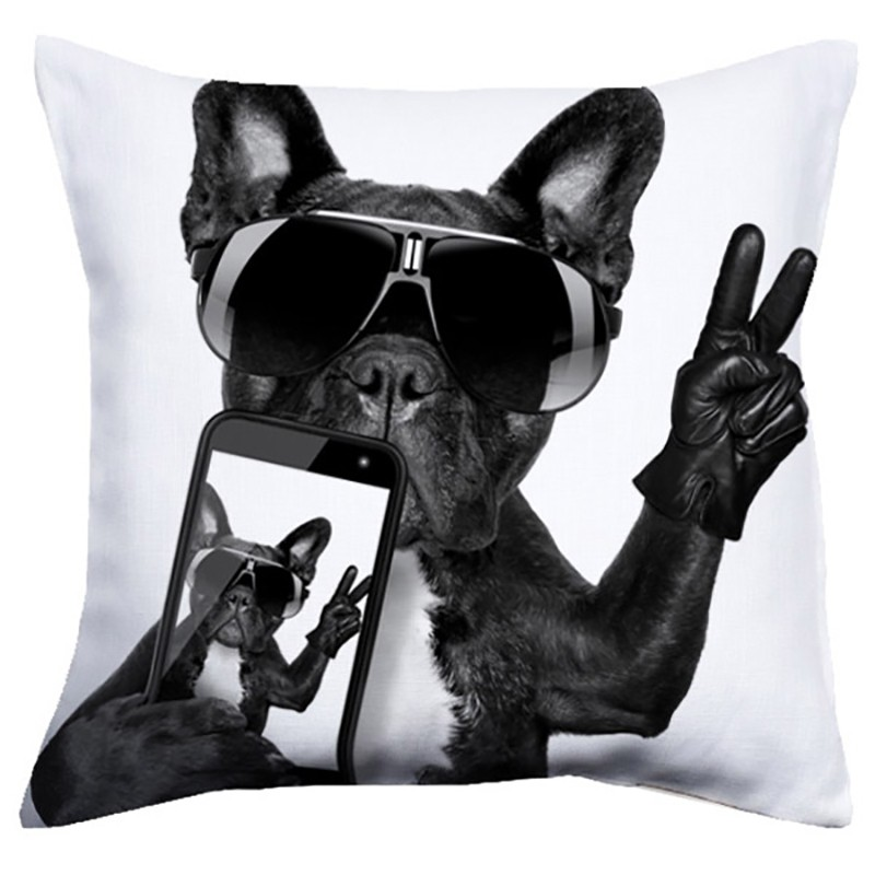 Perna moderna Cool Dog 40x40, Corpuri de iluminat, lustre, aplice