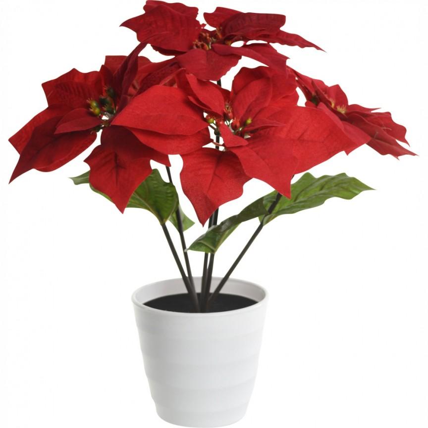 Ghiveci cu flori decorative cu iluminat LED, Craciunita ORPHELIA 28024 GL, ILUMINAT FESTIV, Corpuri de iluminat, lustre, aplice a