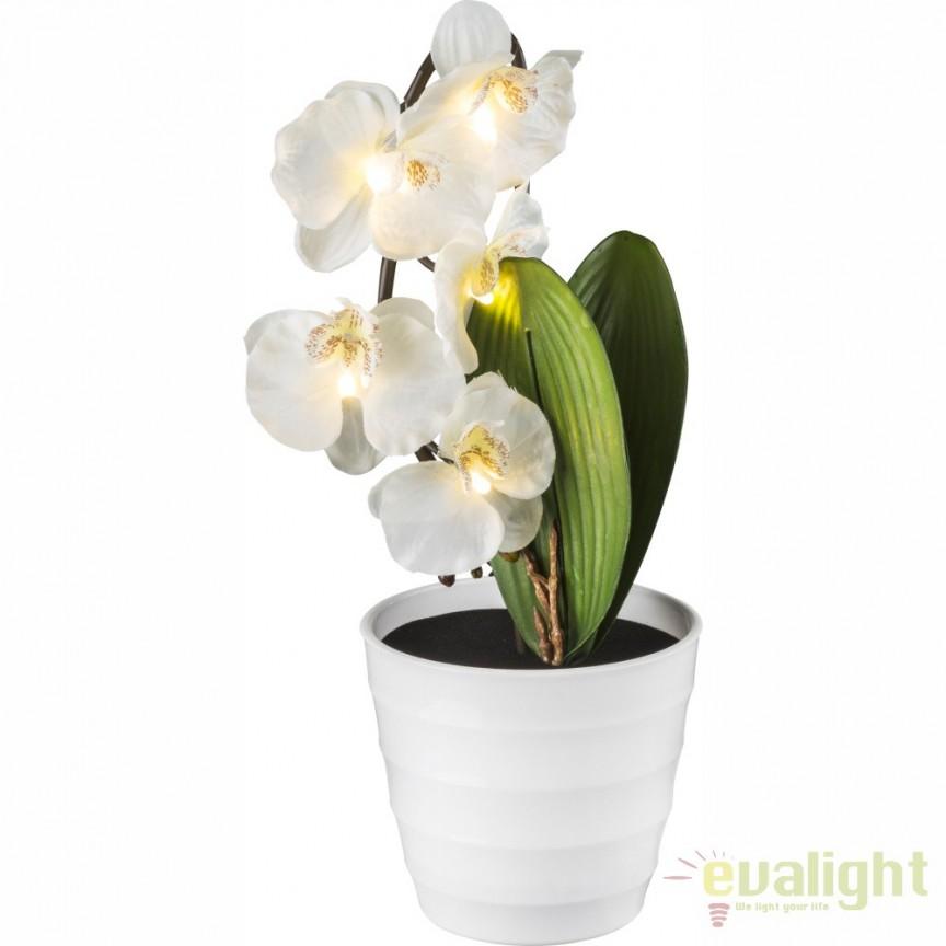 Ghiveci cu flori decorative, iluminat LED, ORPHELIA 28022W GL, Vaze, Ghivece decorative, Corpuri de iluminat, lustre, aplice, veioze, lampadare, plafoniere. Mobilier si decoratiuni, oglinzi, scaune, fotolii. Oferte speciale iluminat interior si exterior. Livram in toata tara.  a
