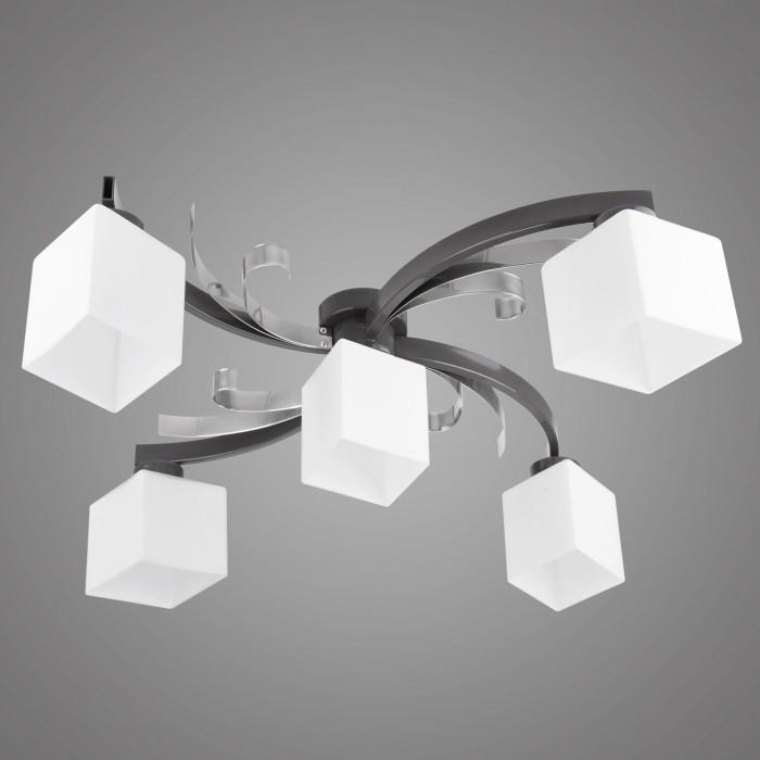 Lustra aplicata moderna ATRATO 5 grafit/ crom AT/5/P/G KM, Magazin, Corpuri de iluminat, lustre, aplice, veioze, lampadare, plafoniere. Mobilier si decoratiuni, oglinzi, scaune, fotolii. Oferte speciale iluminat interior si exterior. Livram in toata tara.  a
