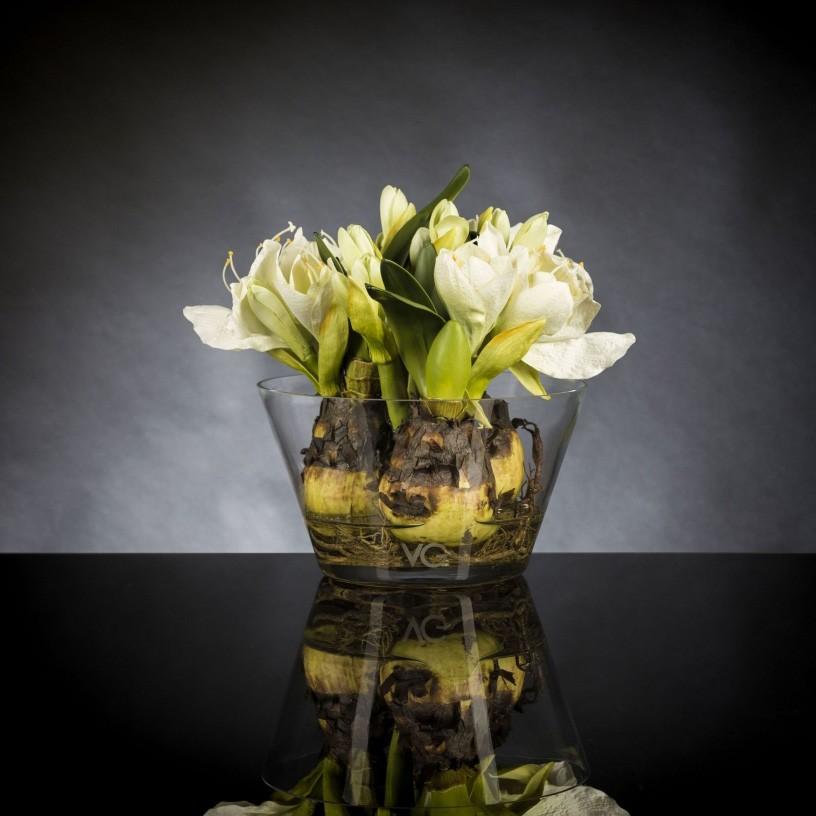 Aranjament floral mic decor festiv design LUX, VASE MASSY BULB 1140955.95, Aranjamente florale LUX, Corpuri de iluminat, lustre, aplice, veioze, lampadare, plafoniere. Mobilier si decoratiuni, oglinzi, scaune, fotolii. Oferte speciale iluminat interior si exterior. Livram in toata tara.  a