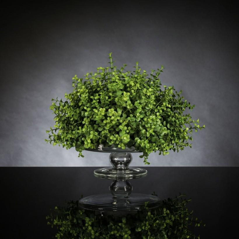 Aranjament floral mic decor festiv design LUX, ALZATA EUCALYPTUS 1141967.60, Aranjamente florale LUX, Corpuri de iluminat, lustre, aplice, veioze, lampadare, plafoniere. Mobilier si decoratiuni, oglinzi, scaune, fotolii. Oferte speciale iluminat interior si exterior. Livram in toata tara.  a