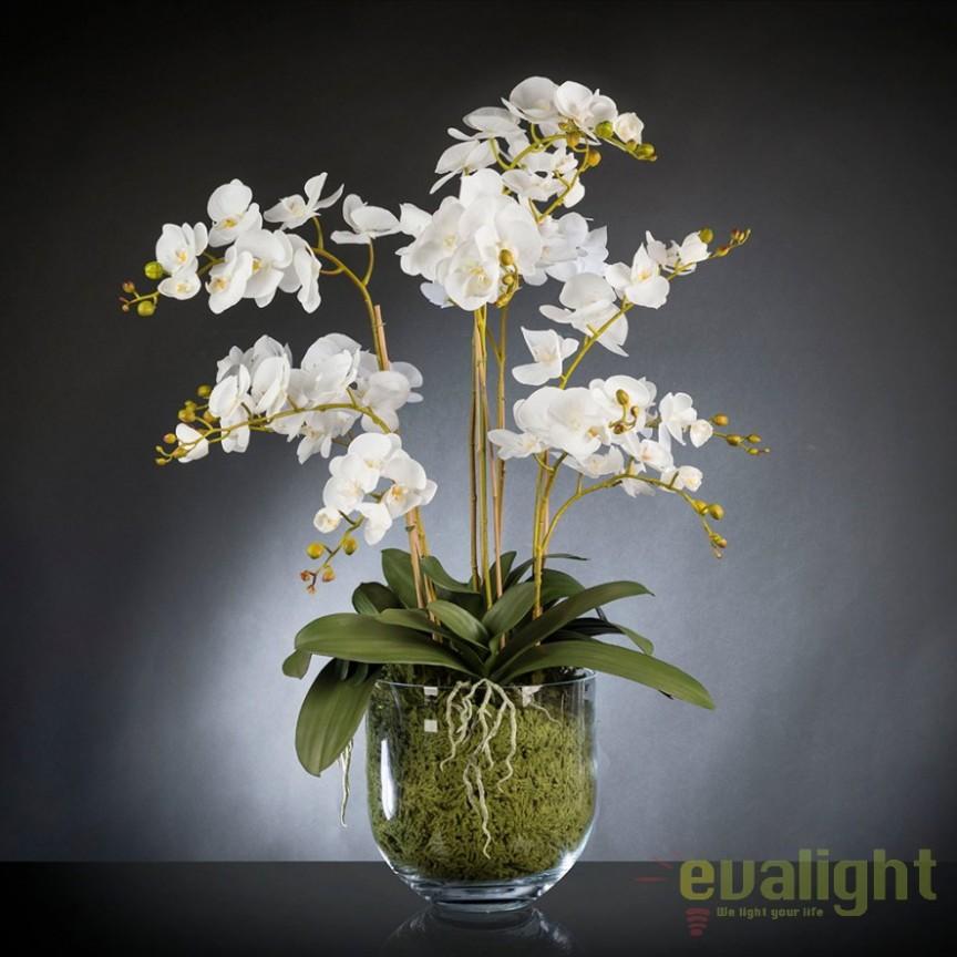 Aranjament floral de dimensiuni mari PHALENOPSIS MAXI 135cm 1142077.95, Aranjamente florale LUX, Corpuri de iluminat, lustre, aplice, veioze, lampadare, plafoniere. Mobilier si decoratiuni, oglinzi, scaune, fotolii. Oferte speciale iluminat interior si exterior. Livram in toata tara.  a