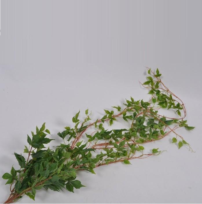 Set de 12 plante pentru decoratiuni suspendate GREEN 135cm 122186 SK, Aranjamente florale LUX, Corpuri de iluminat, lustre, aplice, veioze, lampadare, plafoniere. Mobilier si decoratiuni, oglinzi, scaune, fotolii. Oferte speciale iluminat interior si exterior. Livram in toata tara.  a
