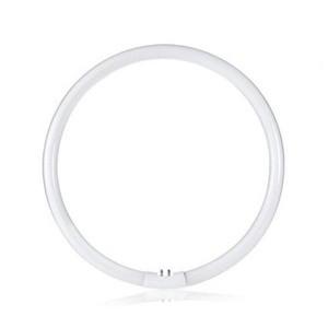 Neon circular T5 32 Watt CIRCOLINA 31125, PROMOTII,  a
