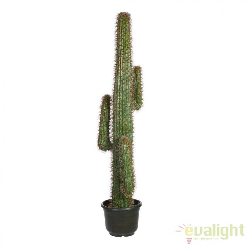 Planta artificiala decorativa pentru exterior, terase, balcoane sau gradini Cactus VERDE 170cm SX-101067, Vaze, Ghivece decorative, Corpuri de iluminat, lustre, aplice, veioze, lampadare, plafoniere. Mobilier si decoratiuni, oglinzi, scaune, fotolii. Oferte speciale iluminat interior si exterior. Livram in toata tara.  a