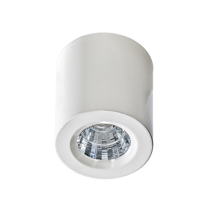 Mini Spot LED aplicat tavan/plafon NANO ROUND alb, Spoturi LED incastrate, aplicate, Corpuri de iluminat, lustre, aplice, veioze, lampadare, plafoniere. Mobilier si decoratiuni, oglinzi, scaune, fotolii. Oferte speciale iluminat interior si exterior. Livram in toata tara.  a