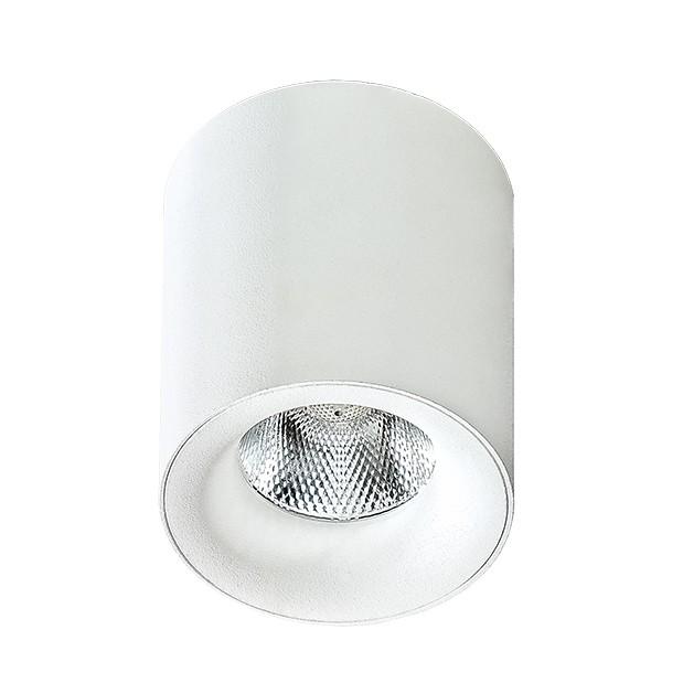Spot LED aplicat tavan/plafon MANE alb, Spoturi LED incastrate, aplicate, Corpuri de iluminat, lustre, aplice, veioze, lampadare, plafoniere. Mobilier si decoratiuni, oglinzi, scaune, fotolii. Oferte speciale iluminat interior si exterior. Livram in toata tara.  a