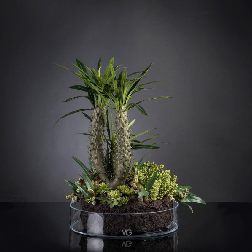 Aranjament floral elegant, design LUX CACTUS GRASS, Aranjamente florale LUX, Corpuri de iluminat, lustre, aplice, veioze, lampadare, plafoniere. Mobilier si decoratiuni, oglinzi, scaune, fotolii. Oferte speciale iluminat interior si exterior. Livram in toata tara.  a