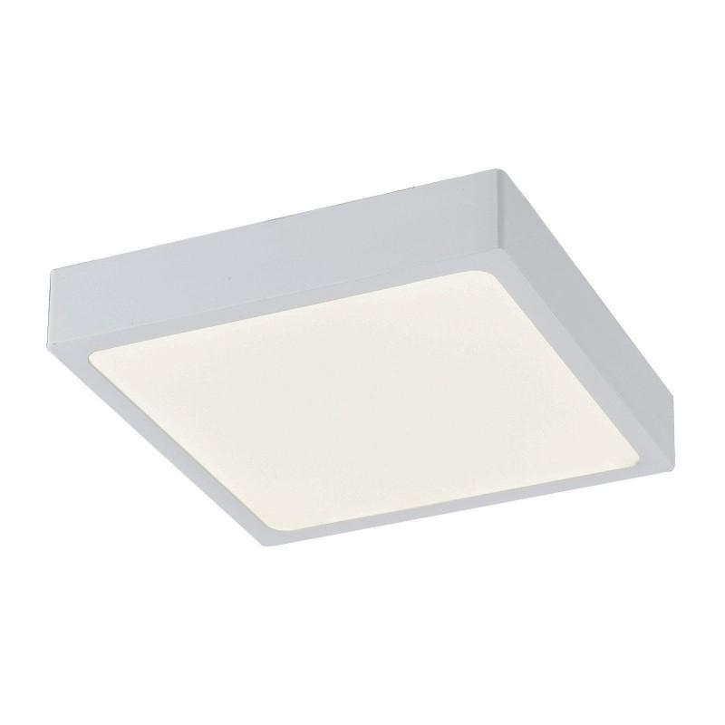 Plafoniera LED dimabila design slim IP44 ALENA 12365-22 GL, Plafoniere cu protectie pentru baie, Corpuri de iluminat, lustre, aplice, veioze, lampadare, plafoniere. Mobilier si decoratiuni, oglinzi, scaune, fotolii. Oferte speciale iluminat interior si exterior. Livram in toata tara.  a