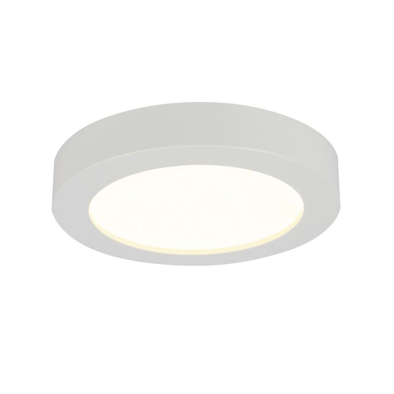 Plafoniera LED design slim Ø22cm PAULA 41605-18 GL, ILUMINAT INTERIOR LED , Corpuri de iluminat, lustre, aplice, veioze, lampadare, plafoniere. Mobilier si decoratiuni, oglinzi, scaune, fotolii. Oferte speciale iluminat interior si exterior. Livram in toata tara.  a