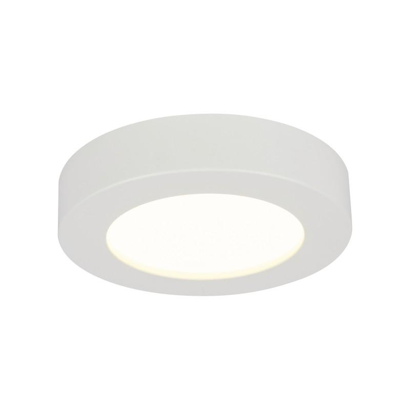 Plafoniera LED dimabila design slim Ø22cm PAULA 41605-20D GL, Lustre LED, Pendule LED, Corpuri de iluminat, lustre, aplice, veioze, lampadare, plafoniere. Mobilier si decoratiuni, oglinzi, scaune, fotolii. Oferte speciale iluminat interior si exterior. Livram in toata tara.  a