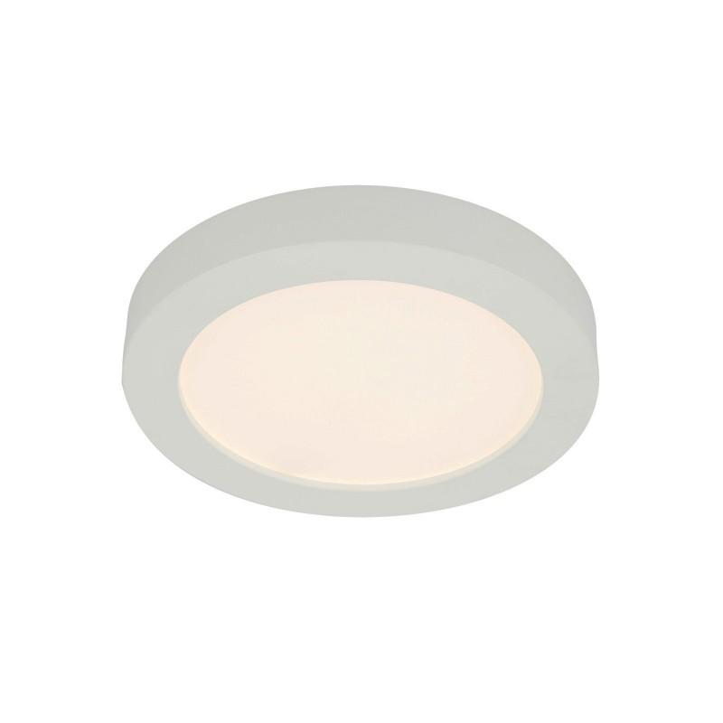 Plafoniera LED design slim Ø24,5cm PAULA 41605-22 GL, ILUMINAT INTERIOR LED , Corpuri de iluminat, lustre, aplice, veioze, lampadare, plafoniere. Mobilier si decoratiuni, oglinzi, scaune, fotolii. Oferte speciale iluminat interior si exterior. Livram in toata tara.  a