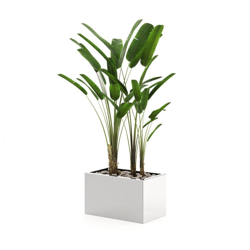 Ghiveci, Suport flori design LUX Stela, 85x50cm, Vaze, Ghivece decorative,  a
