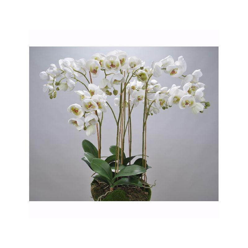 Aranjament floral ORCHID O/SOIL WHITE 83cm 113683 SK, Vaze, Ghivece decorative,  a