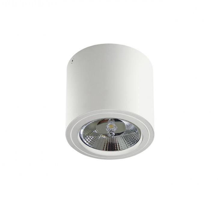 Spot aplicat directionabil de tavan/plafon ALIX alb ZZ AZ3541, Spoturi aplicate - tavan / perete, Corpuri de iluminat, lustre, aplice, veioze, lampadare, plafoniere. Mobilier si decoratiuni, oglinzi, scaune, fotolii. Oferte speciale iluminat interior si exterior. Livram in toata tara.  a
