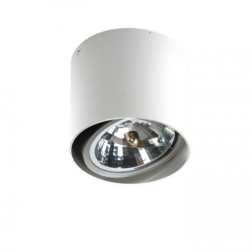 Spot aplicat directionabil de tavan/plafon ALIX alb ZZ AZ1356, Spoturi aplicate - tavan / perete, Corpuri de iluminat, lustre, aplice, veioze, lampadare, plafoniere. Mobilier si decoratiuni, oglinzi, scaune, fotolii. Oferte speciale iluminat interior si exterior. Livram in toata tara.  a