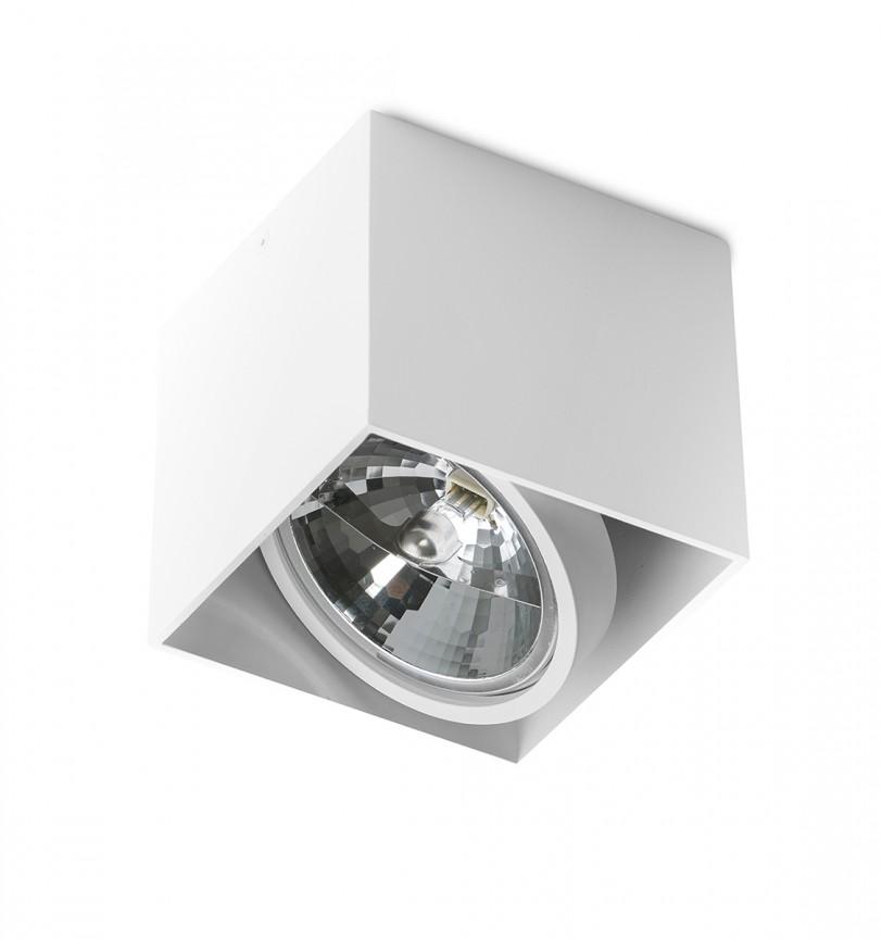 Spot aplicat directionabil de tavan/plafon ALEX alb ZZ AZ1359, Spoturi aplicate - tavan / perete, Corpuri de iluminat, lustre, aplice, veioze, lampadare, plafoniere. Mobilier si decoratiuni, oglinzi, scaune, fotolii. Oferte speciale iluminat interior si exterior. Livram in toata tara.  a