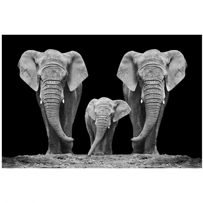 Tablou decorativ, imagine imprimata pe sticla calita ELEPHANT FAMILTY 120x80cm, Tablouri decorative,  a