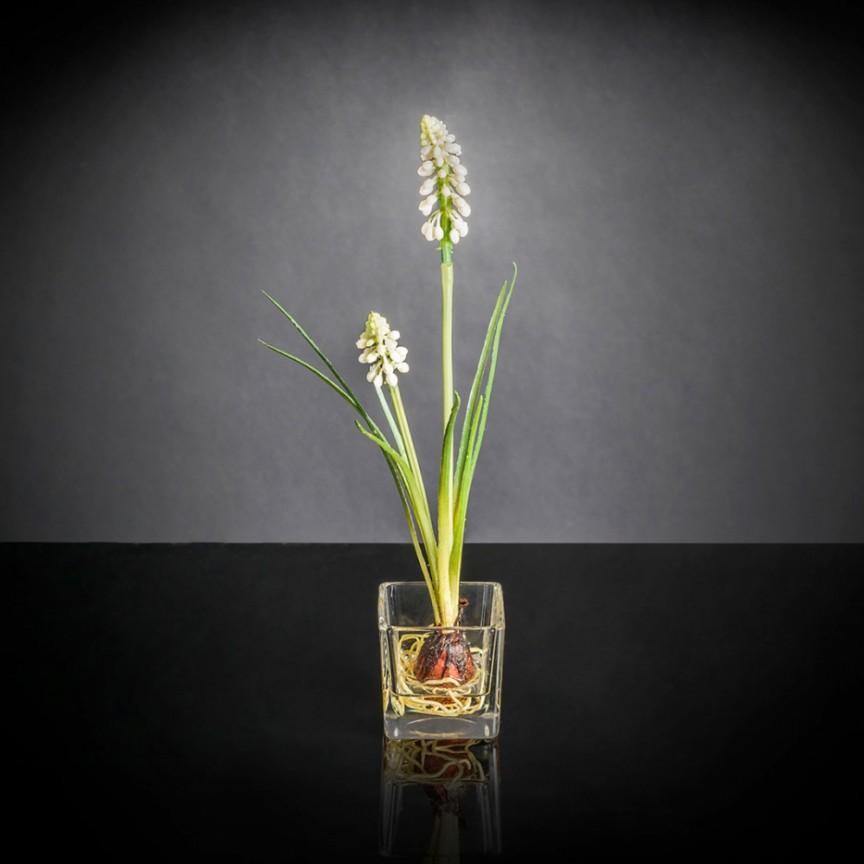 Aranjament floral mic decor festiv design LUX ETERNITY CUBO SINGLE MUSCARI , Magazin,  a