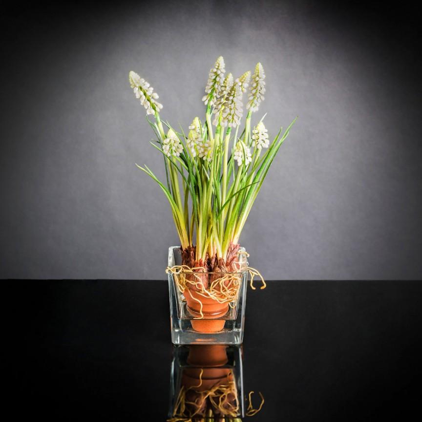 Aranjament floral mic decor festiv design LUX ETERNITY CUBO MUSCARI IN COTTO, Magazin,  a