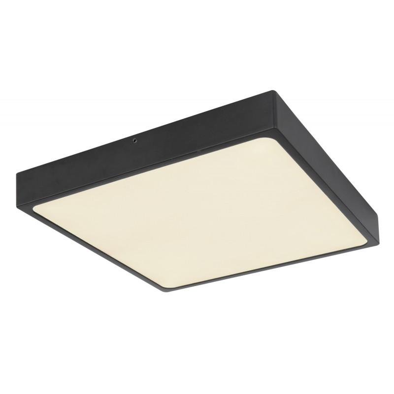 Plafoniera LED dimabila design tehnic ECHO 12369-30 GL, Plafoniere LED / Lustre tavan / perete cu LED⭐ modele moderne pentru dormitor, living, bucatarie, baie, hol.✅Design premium actual Top 2020!❤️Promotii lampi LED❗ ➽ www.evalight.ro. Alege oferte la corpuri de iluminat LED interior de tip  plafoniere LED, aplice cu spoturi LED, montare aplicate pe tanan fals (plafon rigips) sau perete, potrivite pt camere casa cu tavane joase, forme (rotunde, patrate), cu senzor, bec-uri LED economice cu panou LED integrat, lumina calda, rece, lumina neutra (naturala), ieftine si de lux in stil elegant, calitate deosebita la cel mai bun pret. a