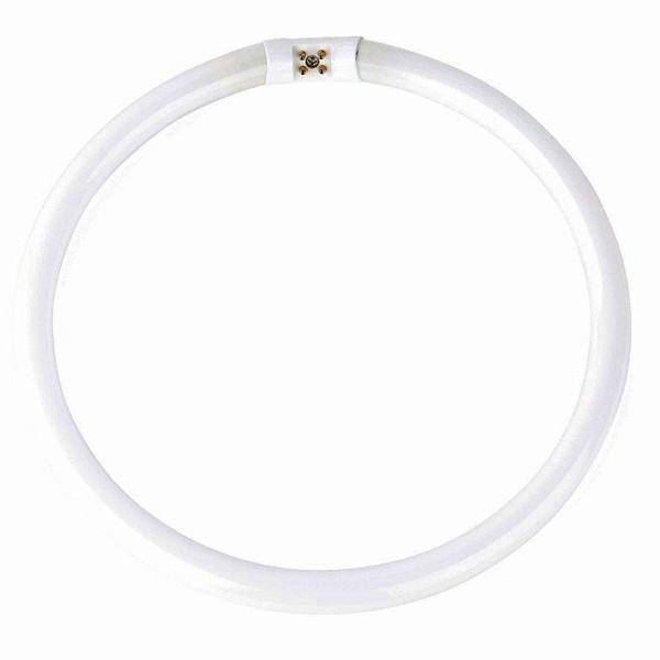 Neon circular diam.17,8cm T5 22Watt warm light 15849 Faro Barcelona,  Neoane, Corpuri de iluminat, lustre, aplice a