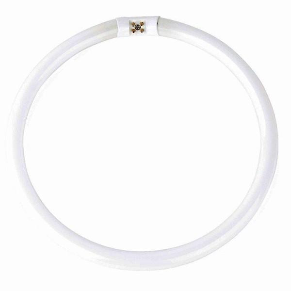 Neon circular diam.27cm T5 32Watt neutral white light 15852 Faro Barcelona,  Neoane, Corpuri de iluminat, lustre, aplice a