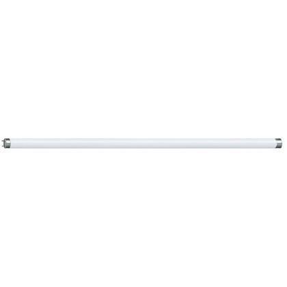 Neon L-119,5cm T8 36W 1271070NL,  Neoane, Corpuri de iluminat, lustre, aplice, veioze, lampadare, plafoniere. Mobilier si decoratiuni, oglinzi, scaune, fotolii. Oferte speciale iluminat interior si exterior. Livram in toata tara.  a